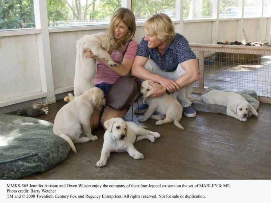 Jennifer Aniston and Owen Wilson enjoy the company of their four-legged co-stars on the set of MARLEY & ME.