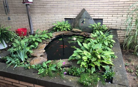 New Pond in the Courtyard