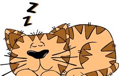 Sleeping Hacks for Students